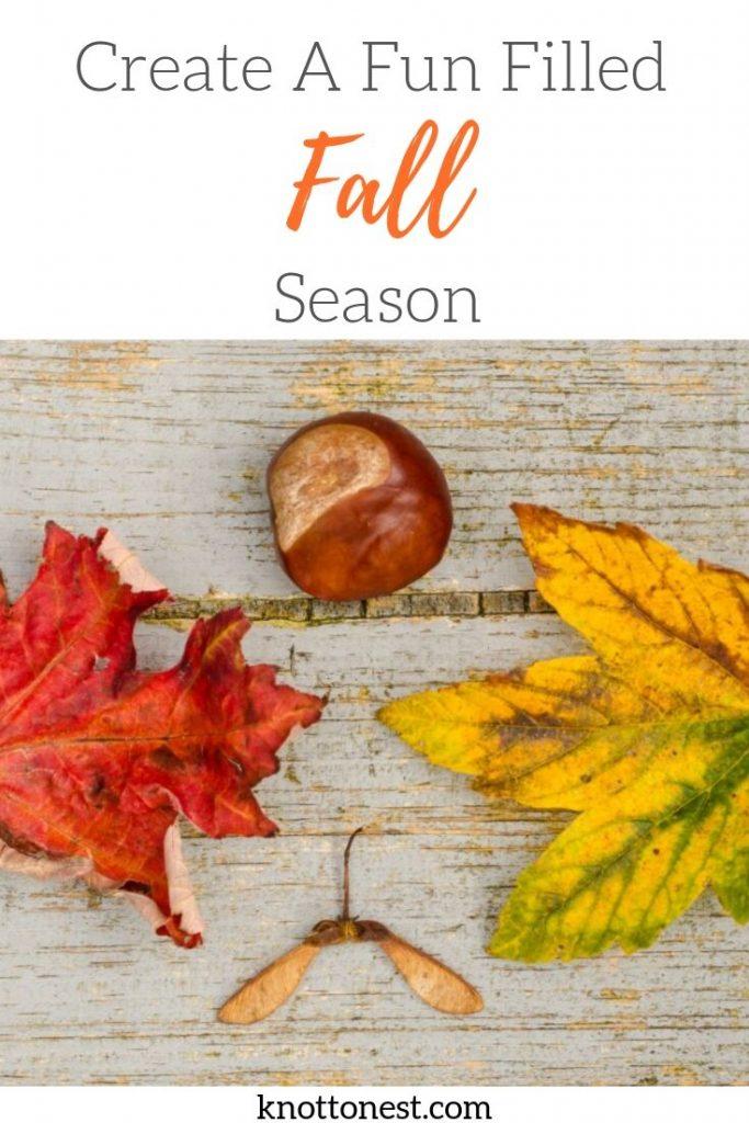 Fun Filled fall season