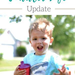 Toddler Life Update