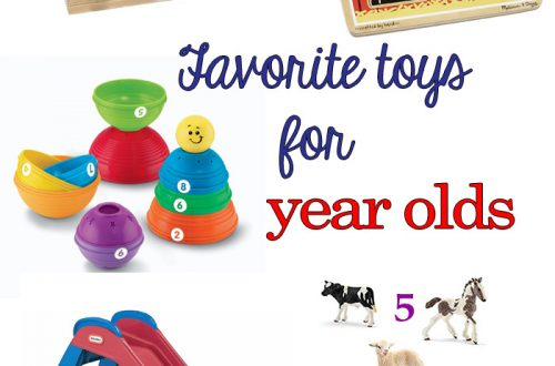 Favorite toys for a one year