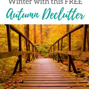 Free Declutter Plan for whole house