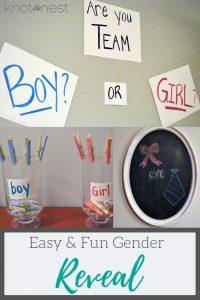 Easy Gender Reveal Ideas
