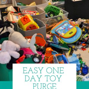 Organize messy toys in just one day
