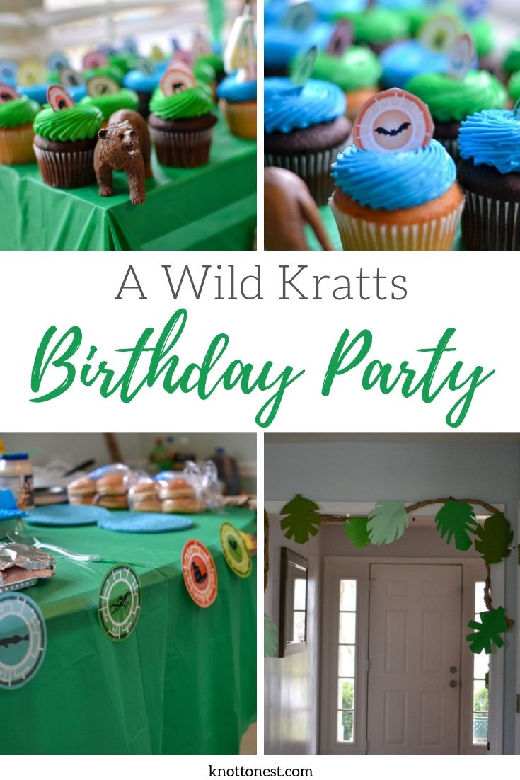 Wild Kratts themed birthday party ideas