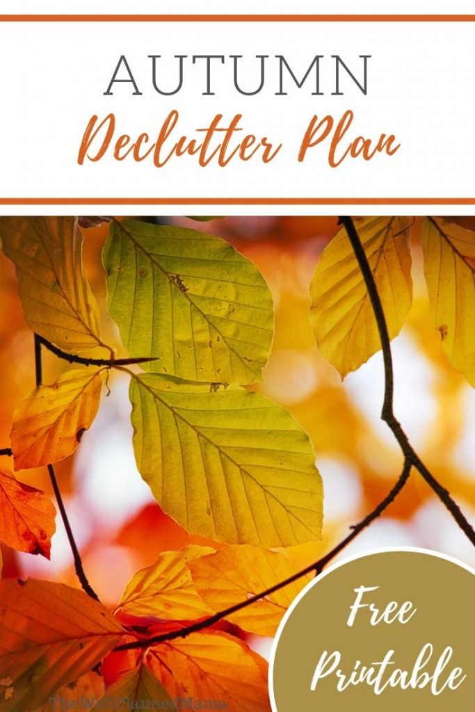 One Month Declutter Plan Printable