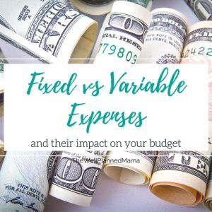 Fixed vs variable expenses